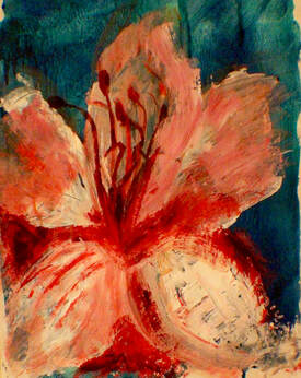 Dew Kissed Hibiscus by Annie Bromham
